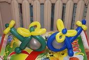 Студия праздничного оформления , изготовление игрушек из воздушных шаро