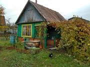Дачный участок с летним домиком