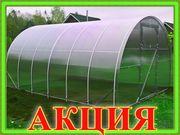 Сибирская Усиленная Теплица 3х4;  3х6;  3х8;  3х10 метров. Доставка по РБ